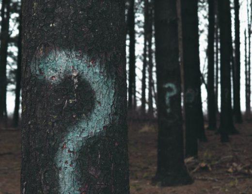 Fragezeichen auf Baum