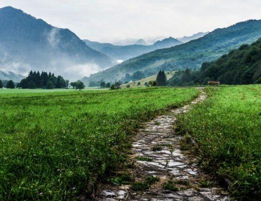 Mut den eigenen Weg zu gehen