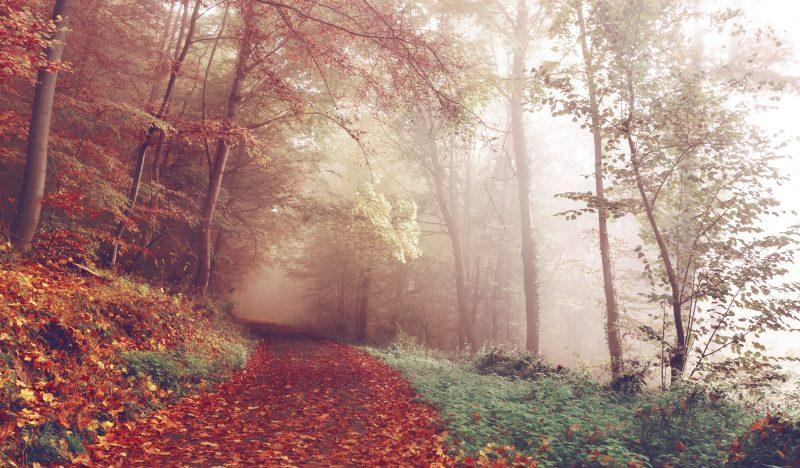 Herbstdepression